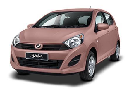 Perodua Axia Rentals With Casons